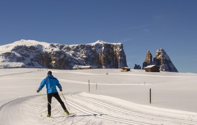 On the 16th and 17th of February, there's the Men and Women World Cup of Cross Country in Cogne (Aosta Valley)